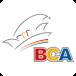 BCA-Büttelborn